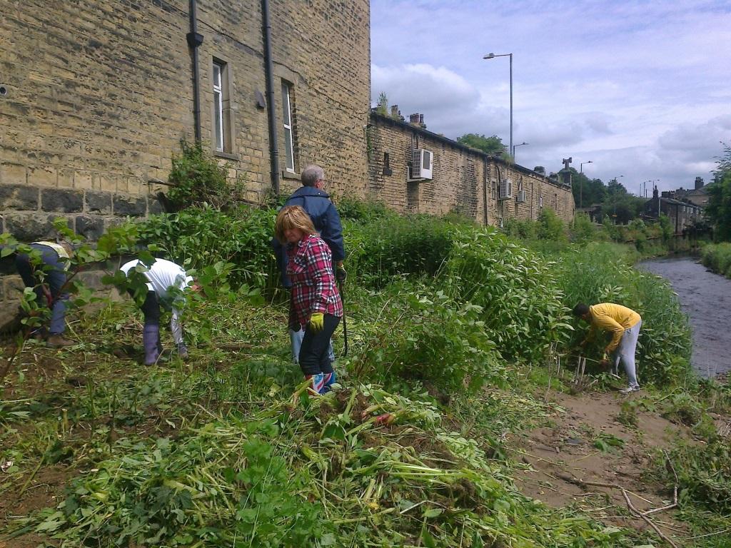 Flood reduction volunteering - Lloyds Bank
